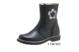 I 1967I02